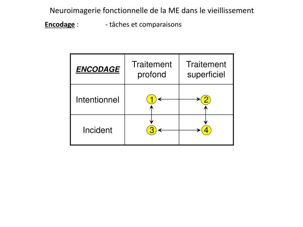 Neuroimagerie fonctionnelle de la ME dans le vieillissement