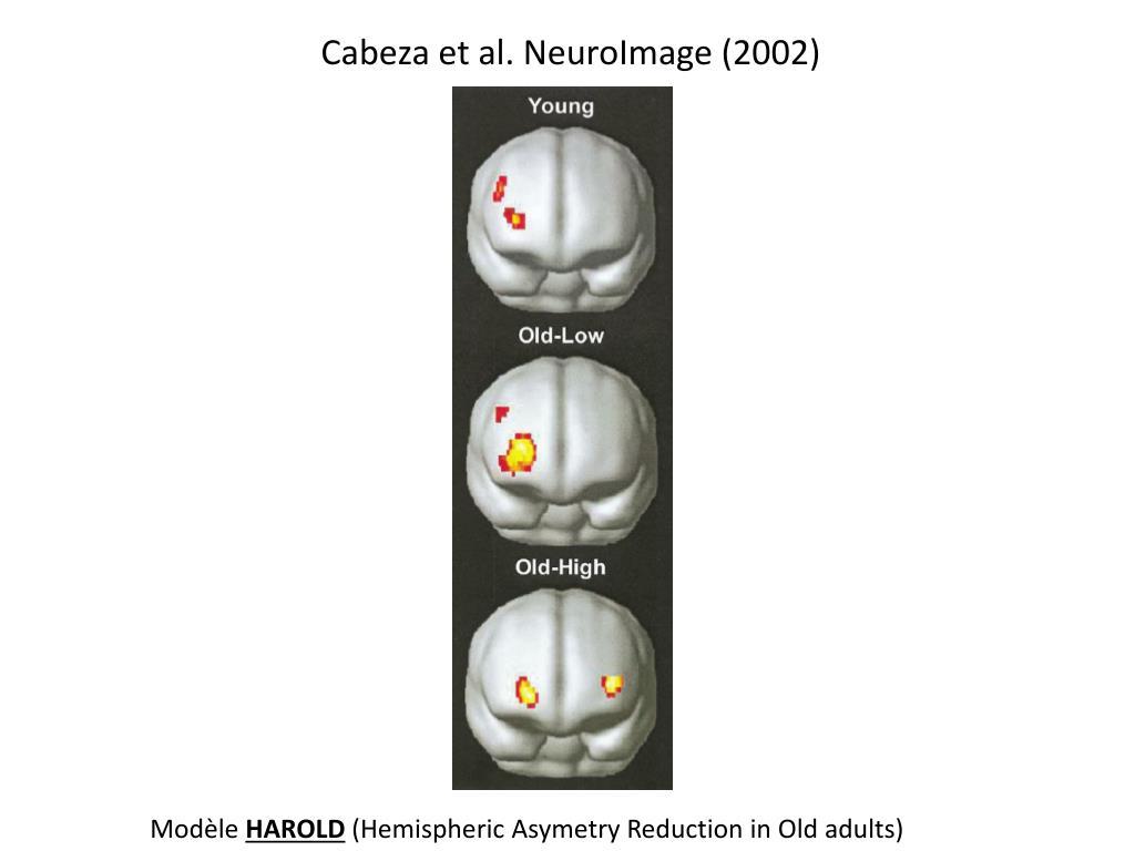 Cabeza et al. NeuroImage (2002)