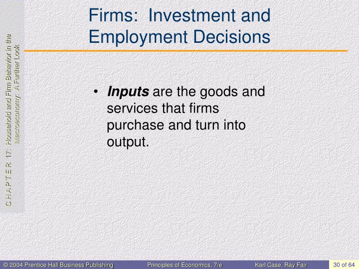Firms:  Investment and