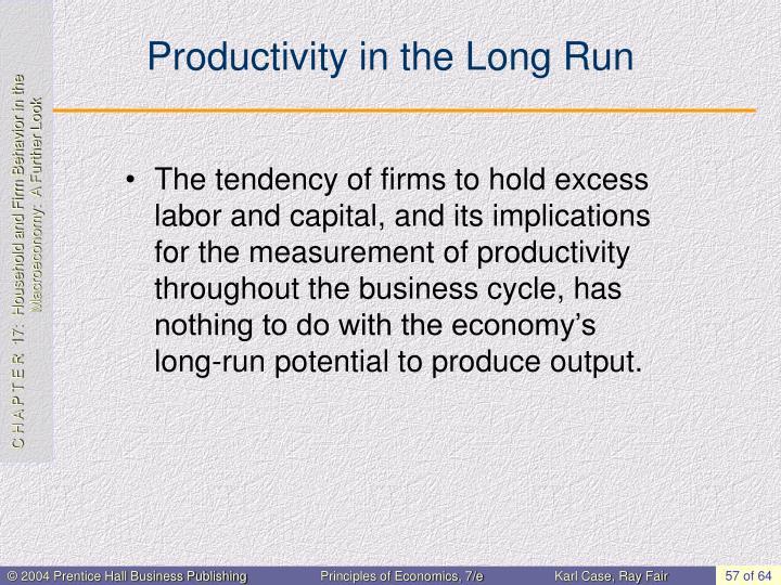 Productivity in the Long Run