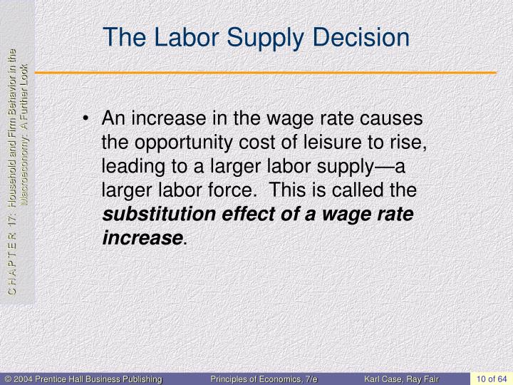 The Labor Supply Decision