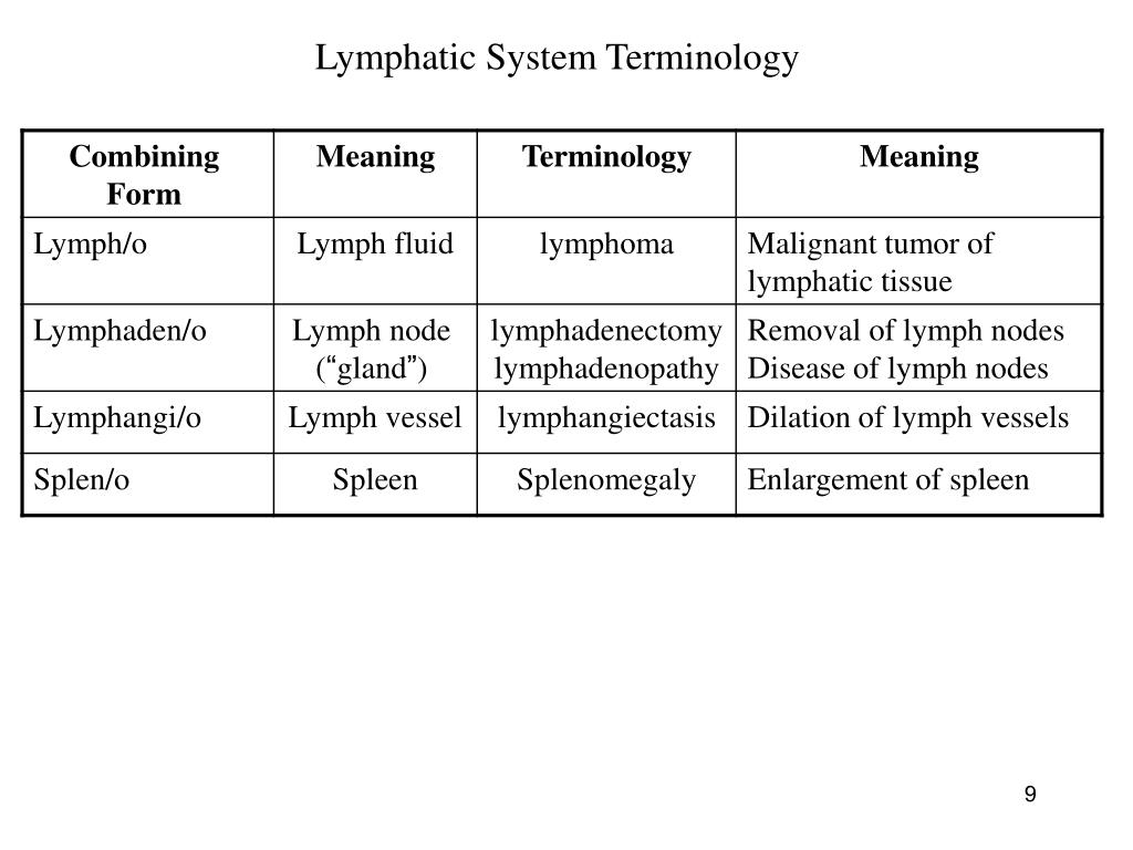Lymphatic System Terminology
