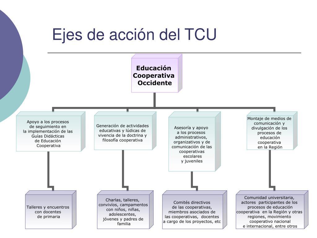 Ejes de acción del TCU