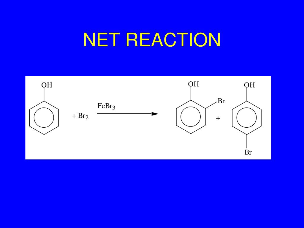 NET REACTION