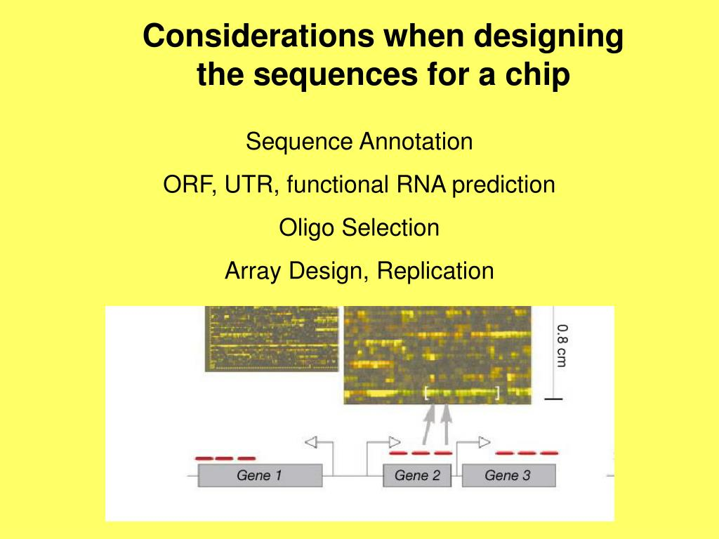 Considerations when designing the sequences for a chip