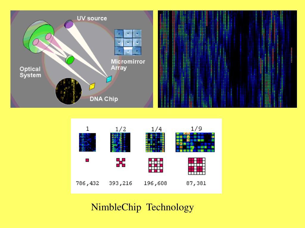 NimbleChip  Technology