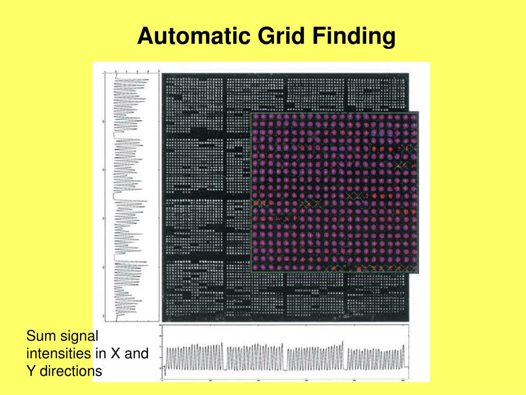 Automatic Grid Finding