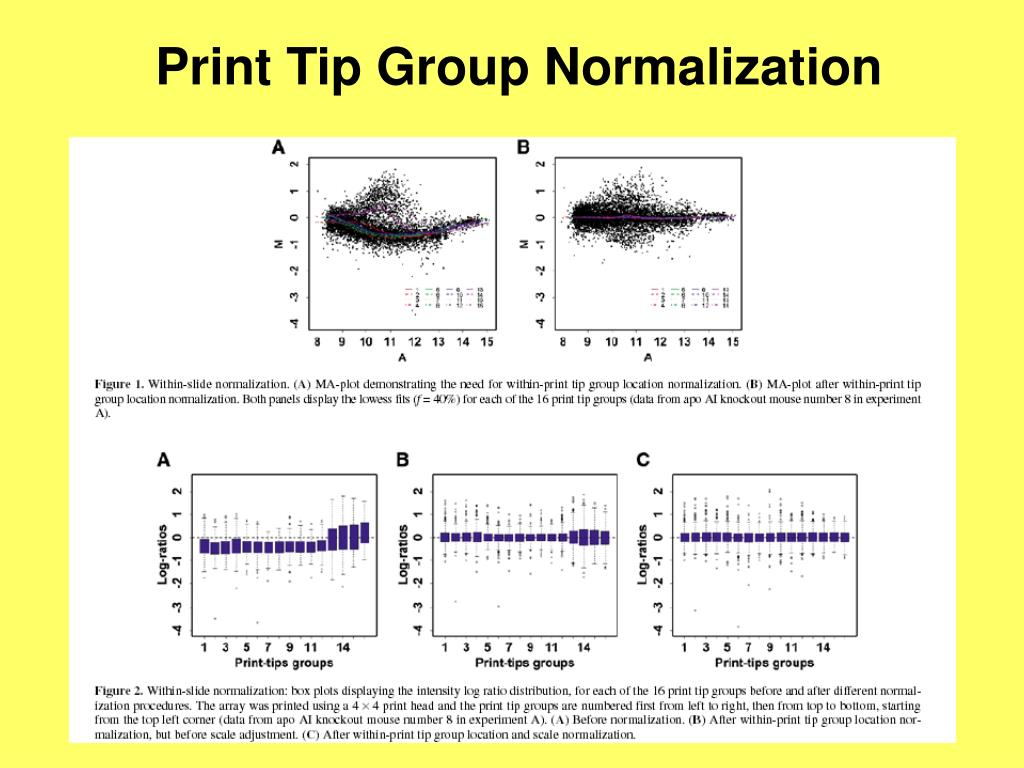 Print Tip Group Normalization