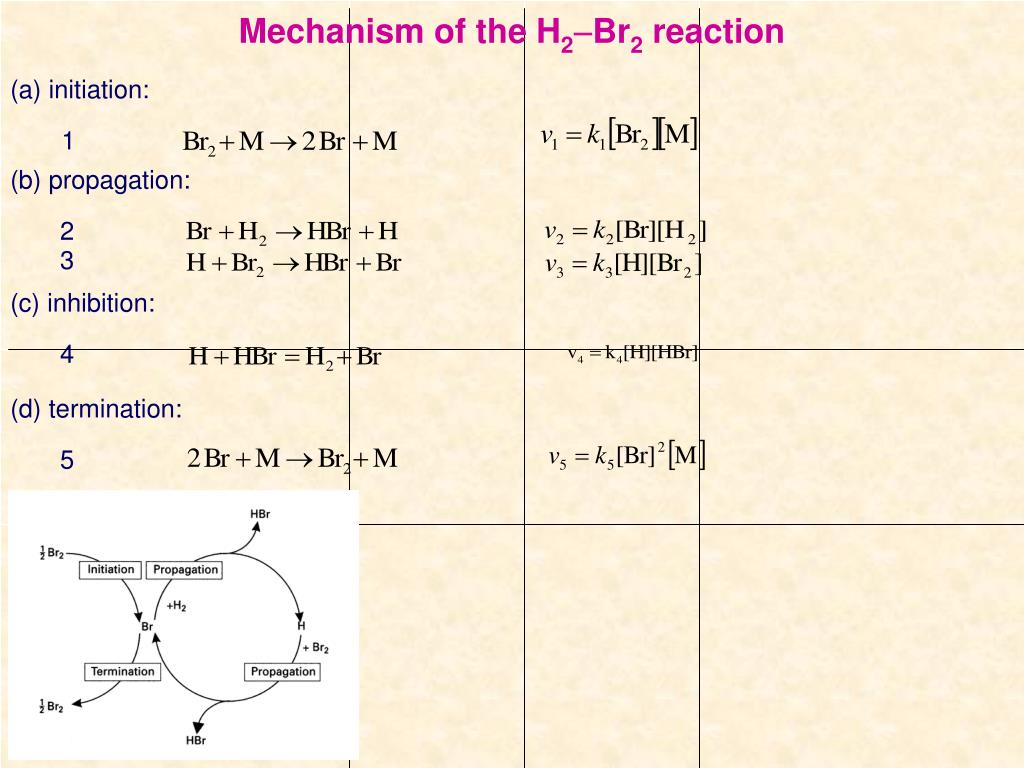 Mechanism of the