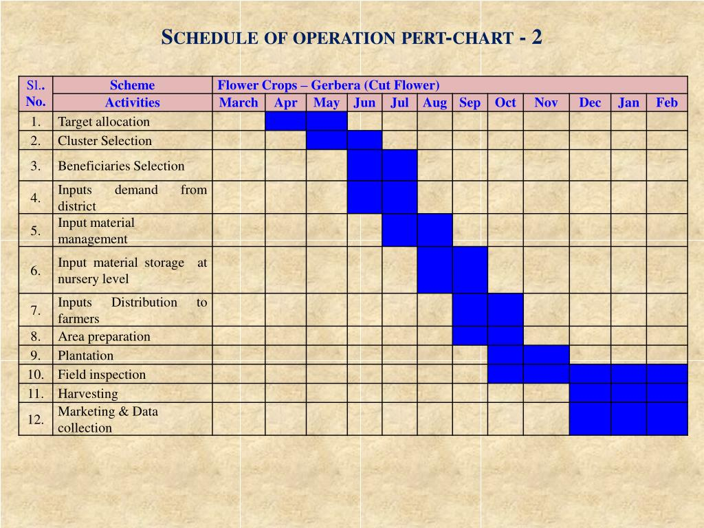 Schedule of operation pert-chart - 2