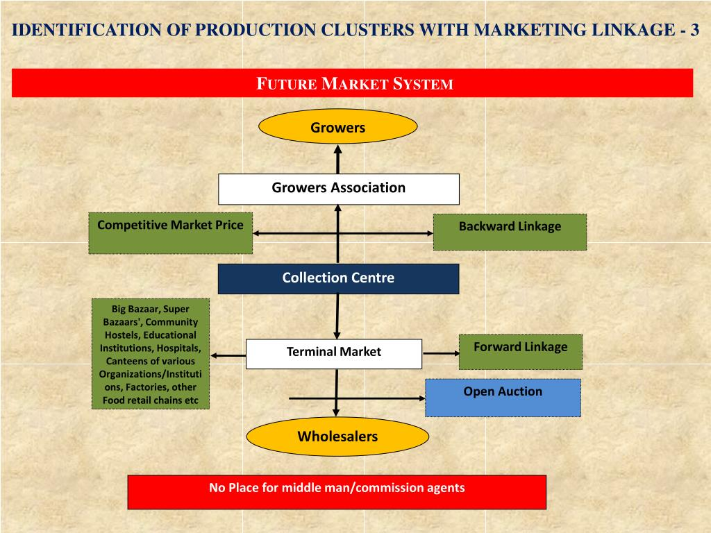 IDENTIFICATION OF PRODUCTION CLUSTERS WITH MARKETING LINKAGE - 3