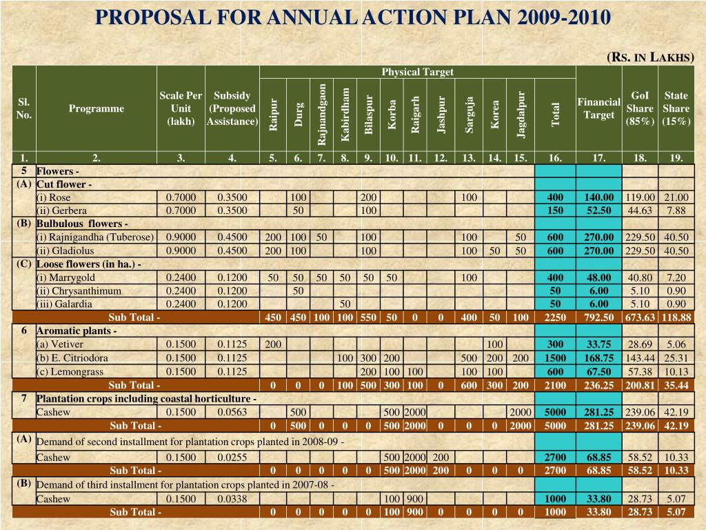 PROPOSAL FOR ANNUAL ACTION PLAN 2009-2010