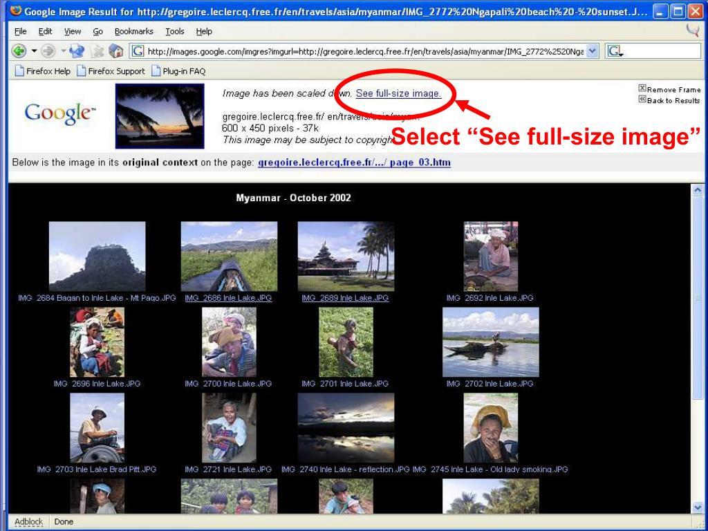"""Select """"See full-size image"""""""