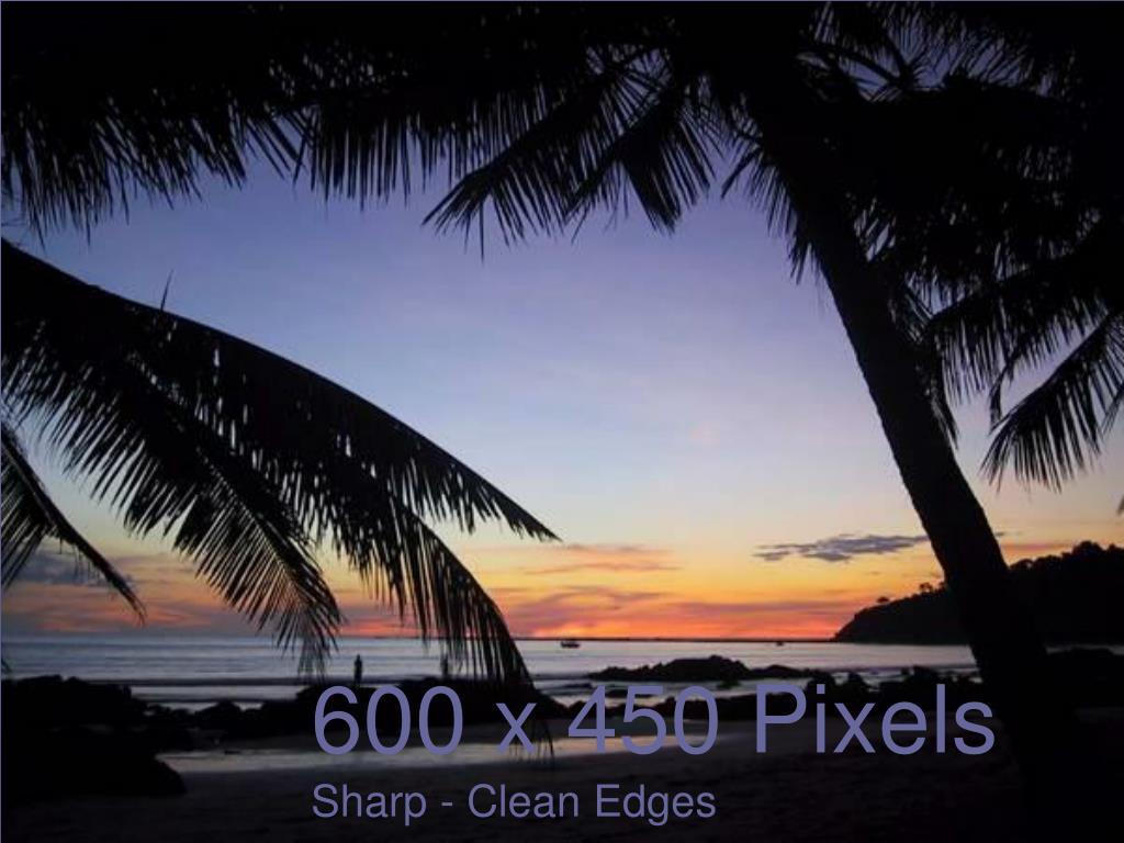 600 x 450 Pixels