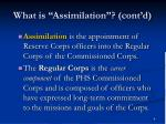 what is assimilation cont d