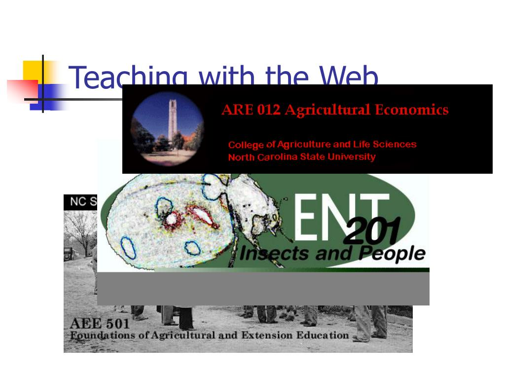 Teaching with the Web