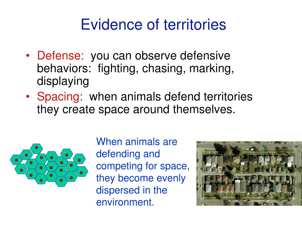 Evidence of territories