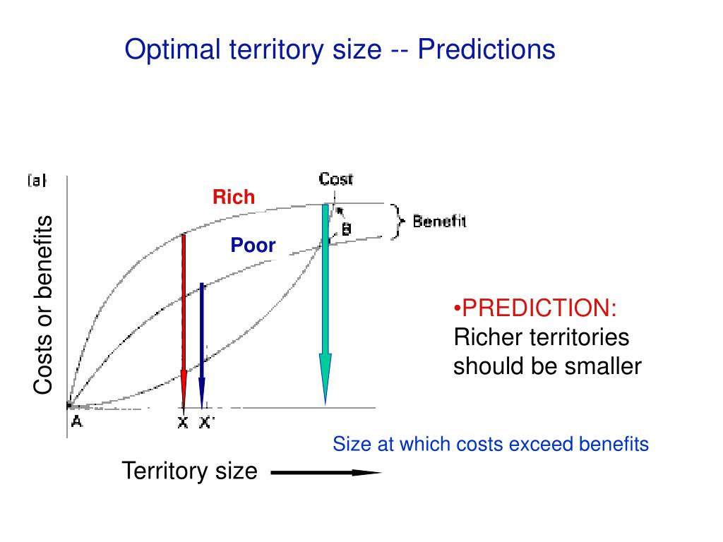Optimal territory size -- Predictions