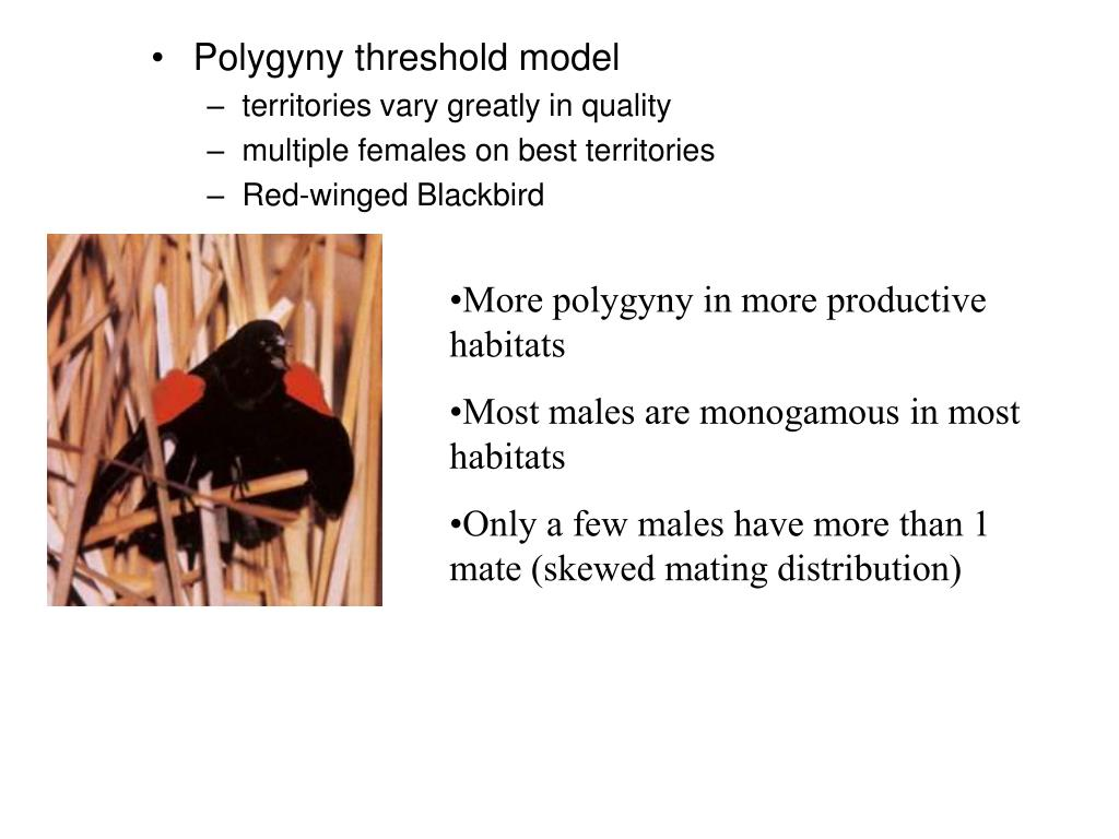 Polygyny threshold model