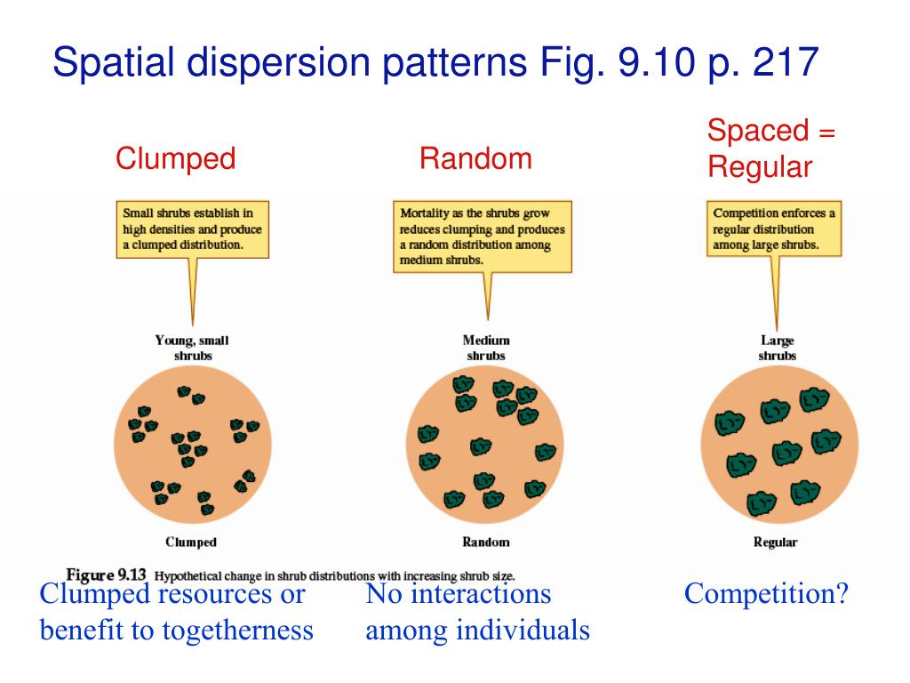 Spatial dispersion patterns Fig. 9.10 p. 217