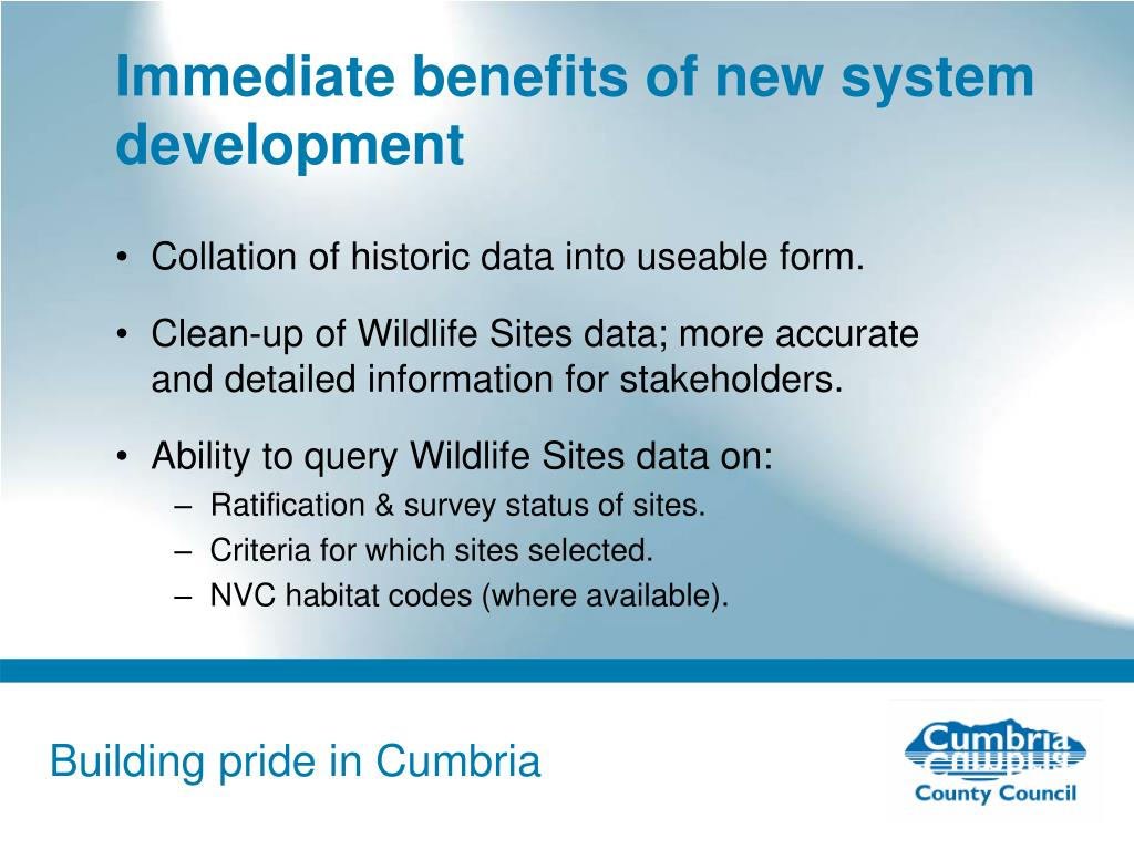 Immediate benefits of new system development