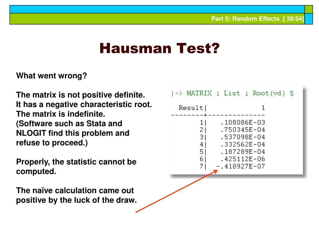 Hausman Test?
