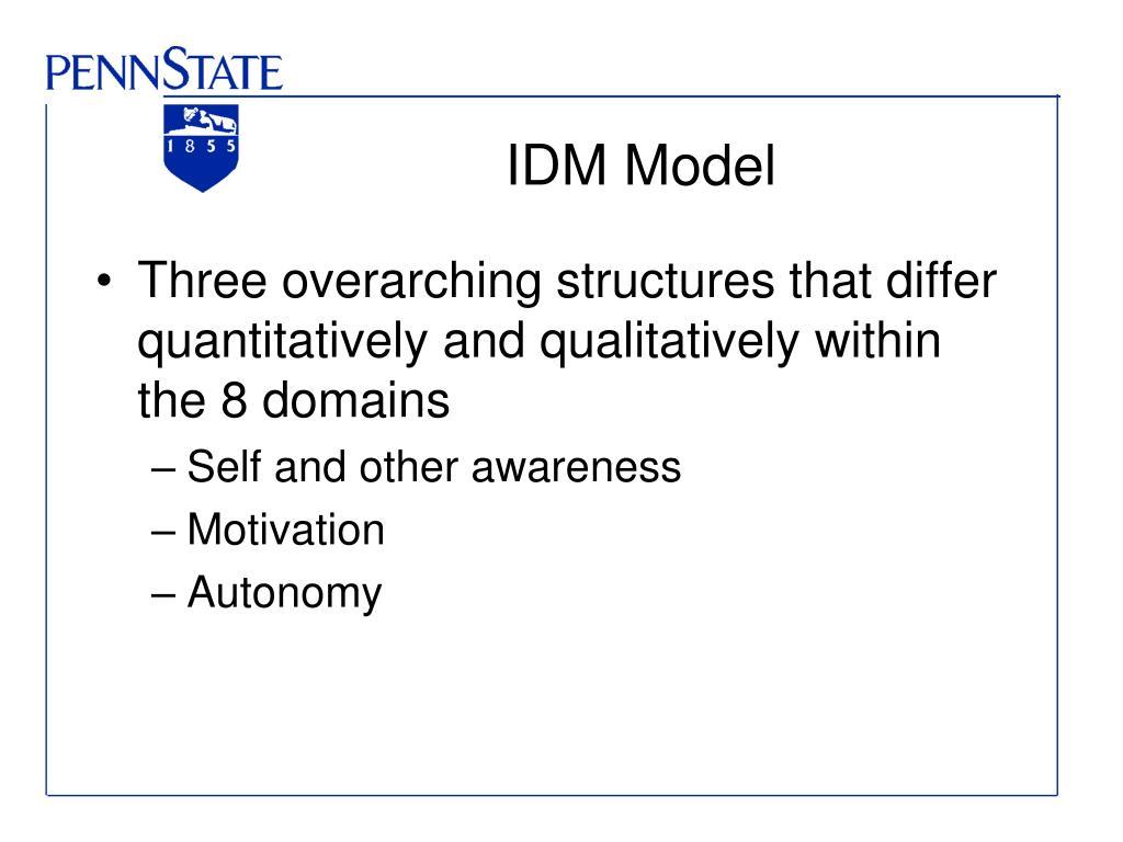 IDM Model