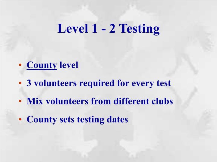 Level 1 - 2 Testing