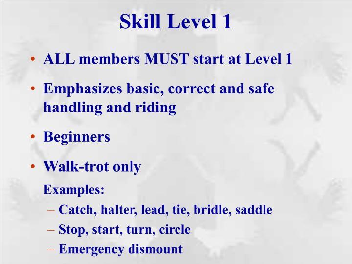 Skill Level 1