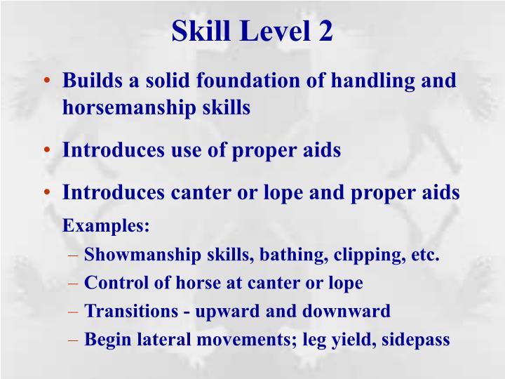 Skill Level 2