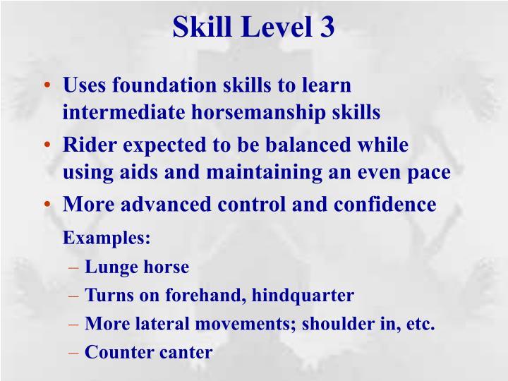 Skill Level 3