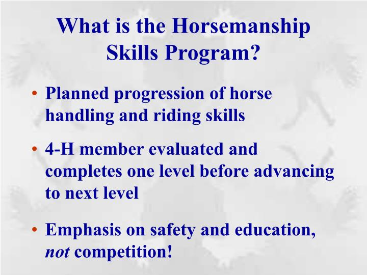 What is the horsemanship skills program