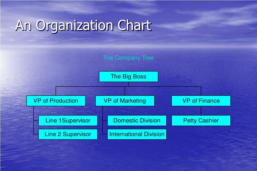 An Organization Chart