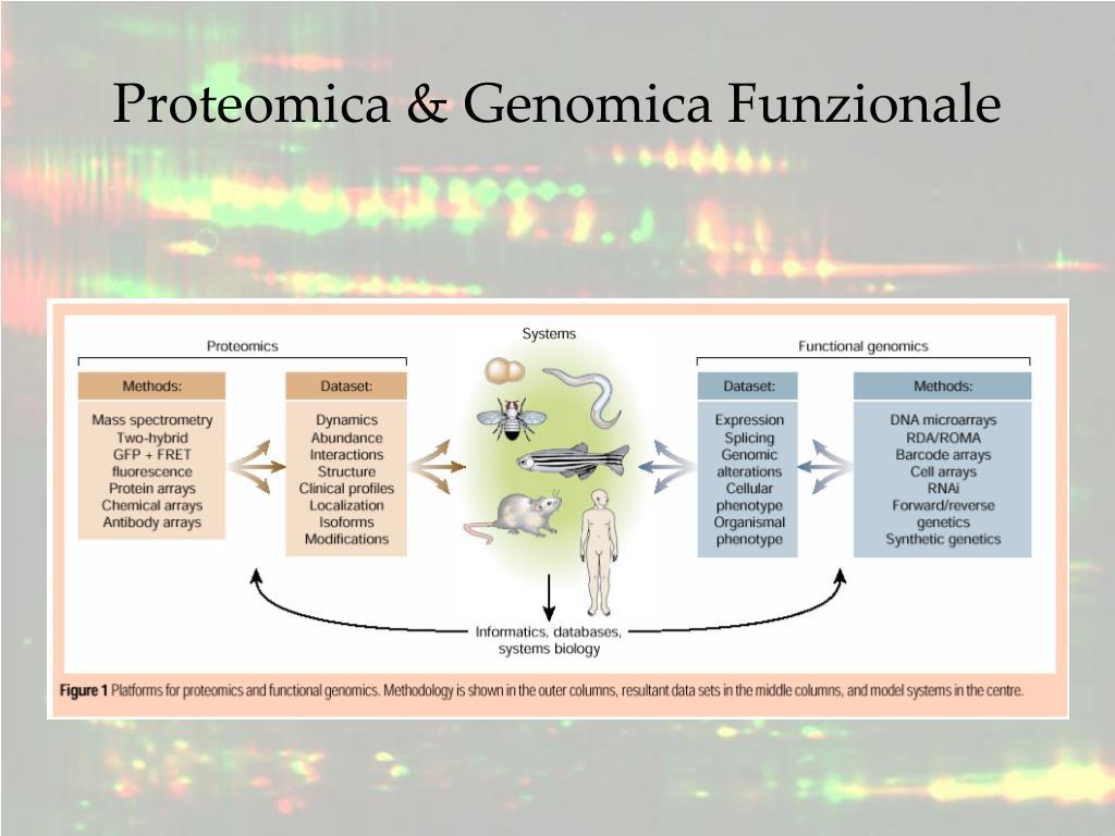 Proteomica & Genomica Funzionale