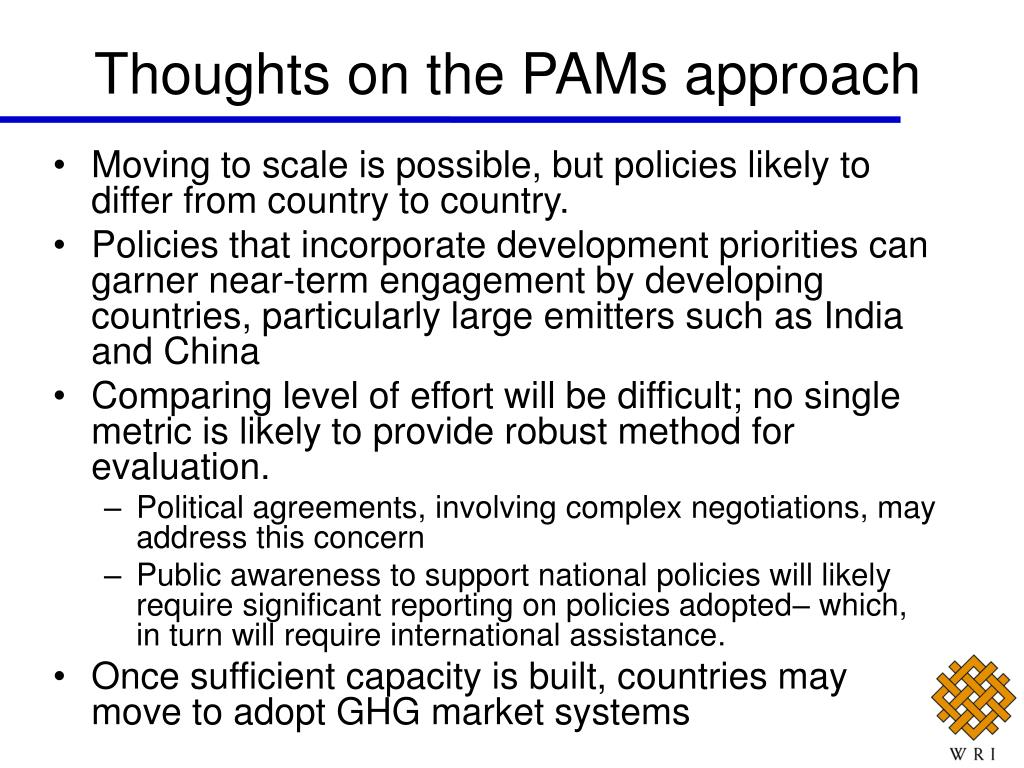 Thoughts on the PAMs approach