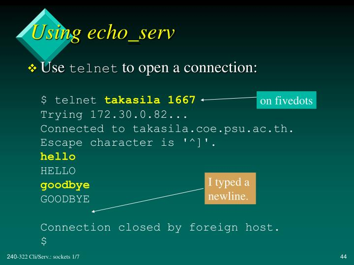 Using echo_serv