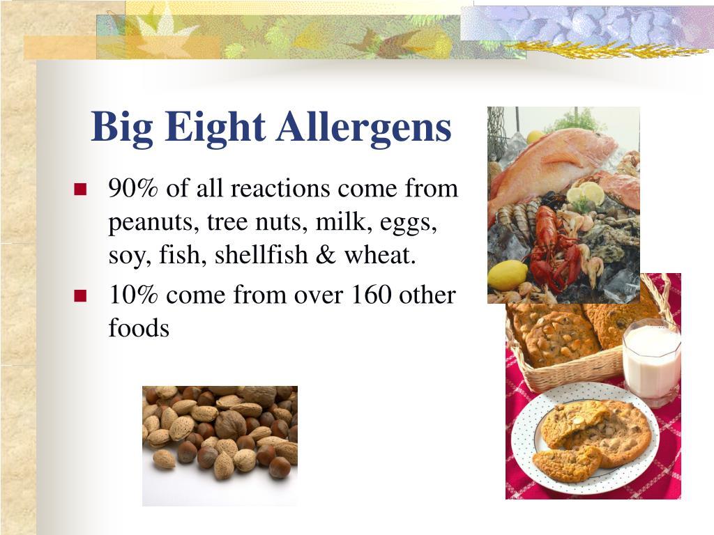 Big Eight Allergens