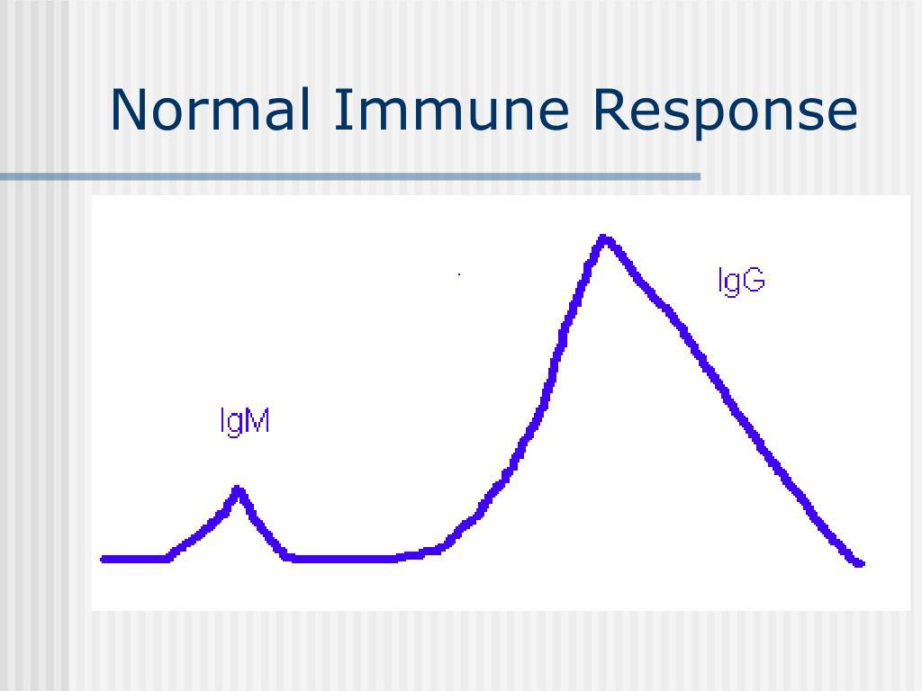 Normal Immune Response