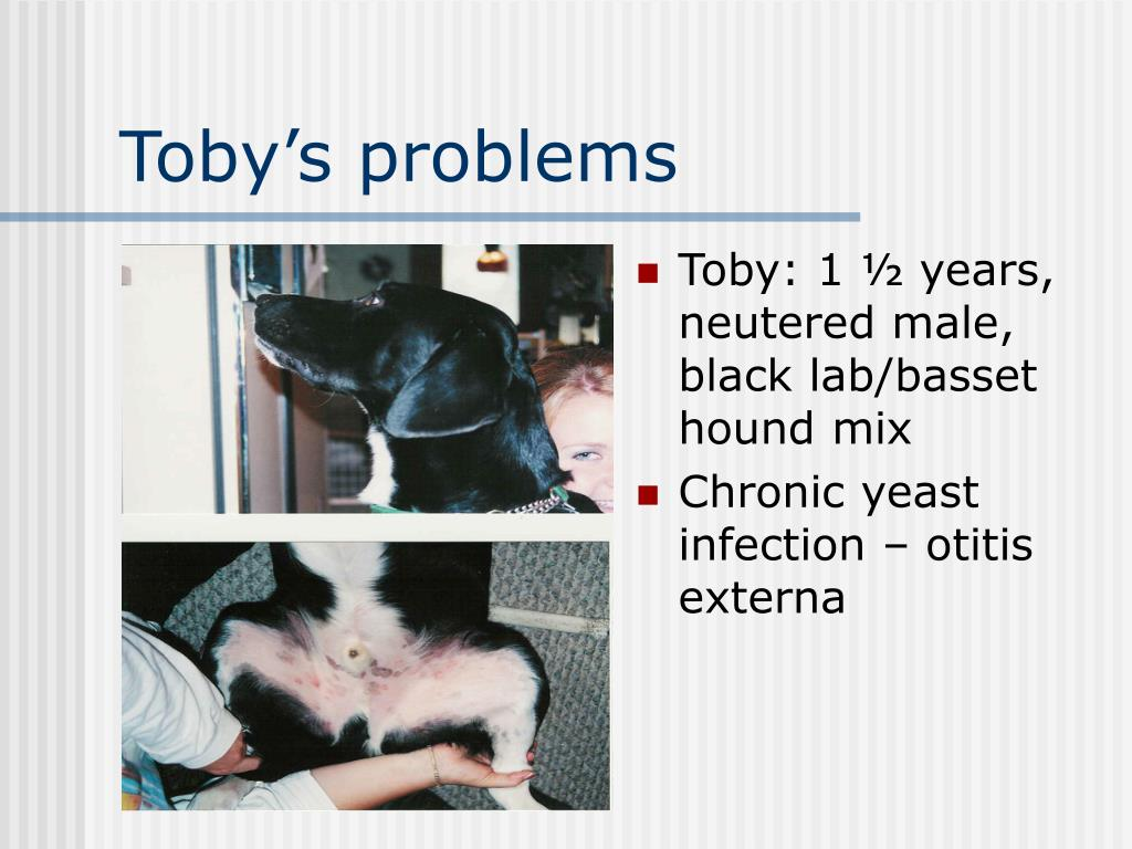 Toby's problems