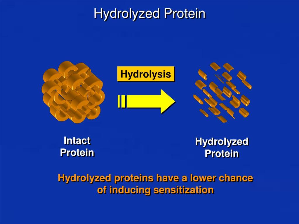 Hydrolyzed Protein