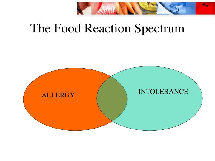 The food reaction spectrum