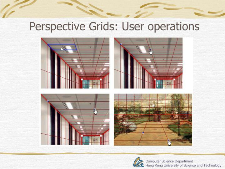 Perspective Grids: User operations