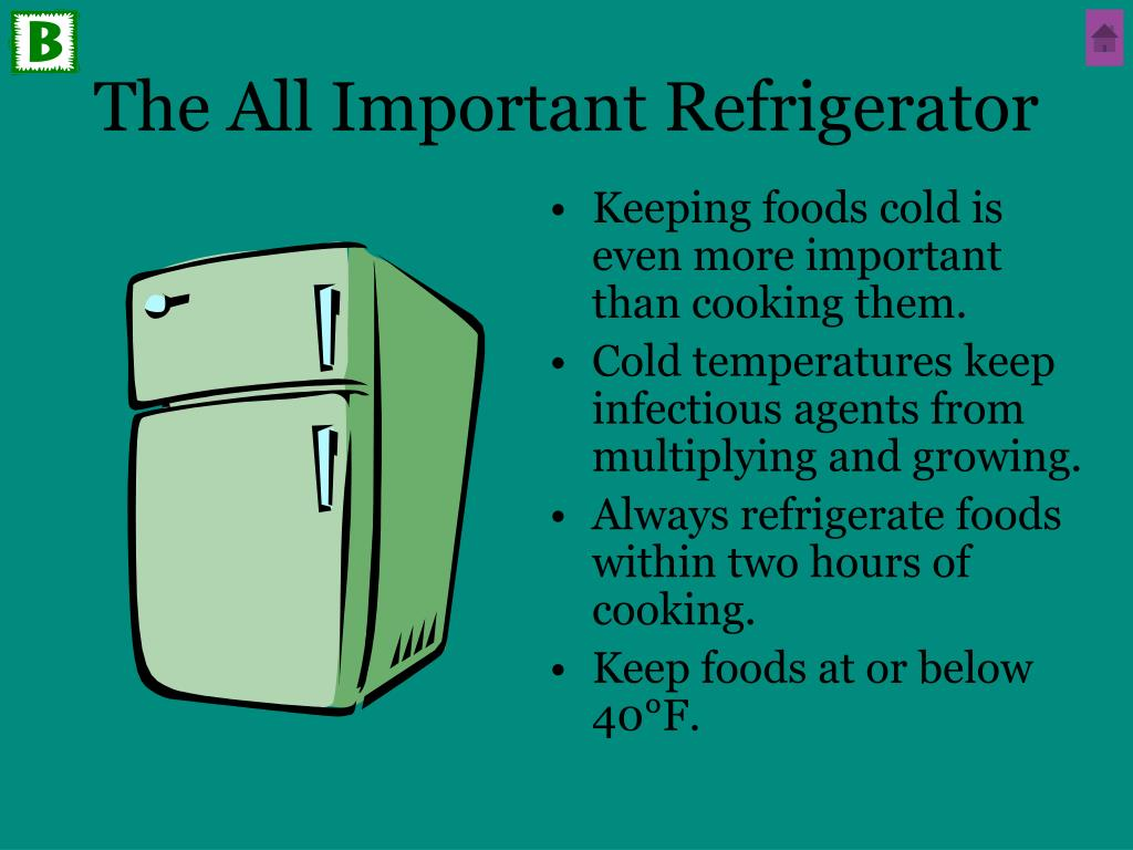 The All Important Refrigerator