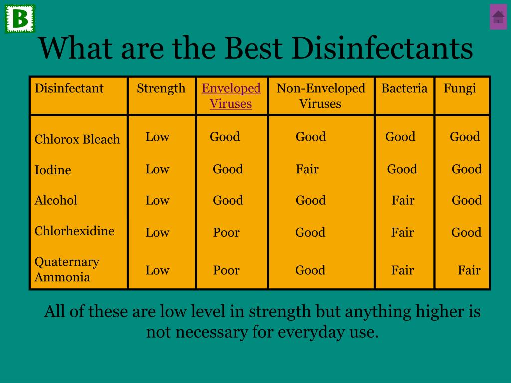 What are the Best Disinfectants