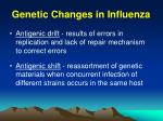 genetic changes in influenza