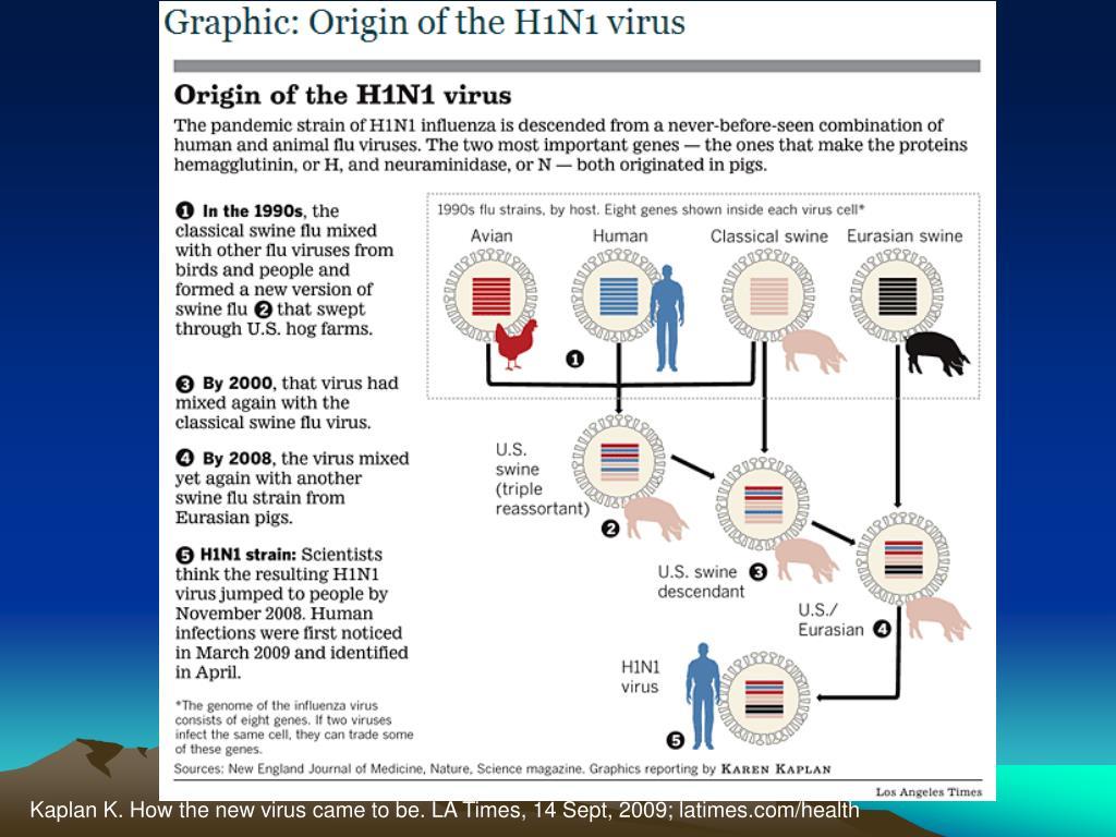 Kaplan K. How the new virus came to be. LA Times, 14 Sept, 2009; latimes.com/health