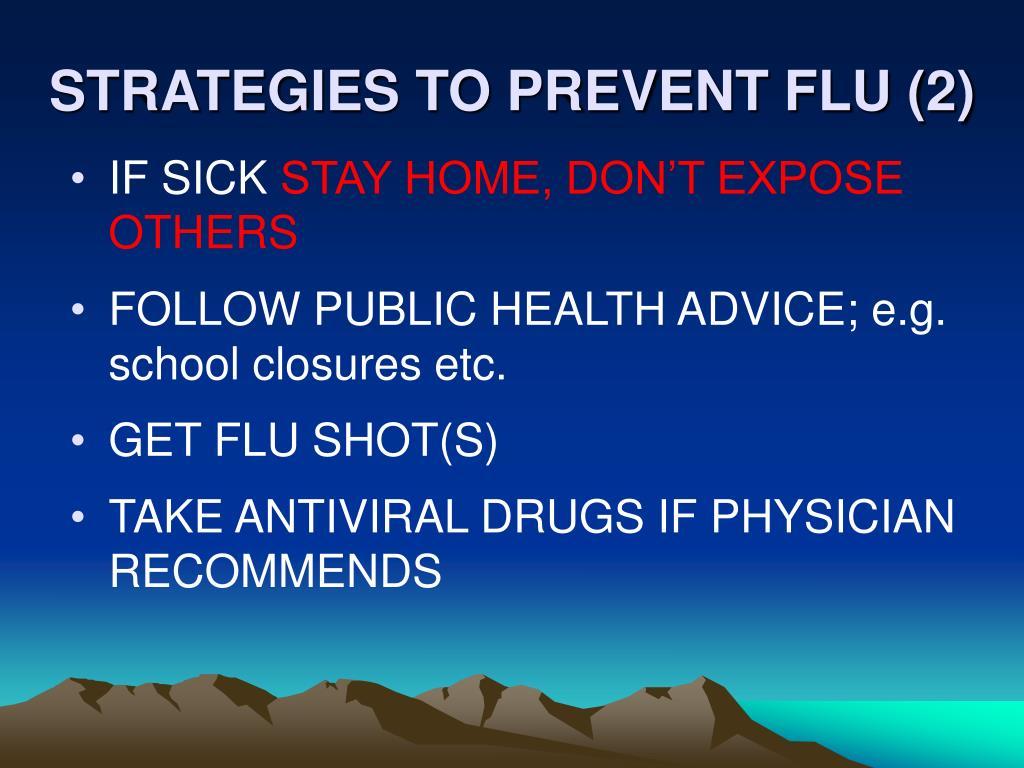STRATEGIES TO PREVENT FLU (2)