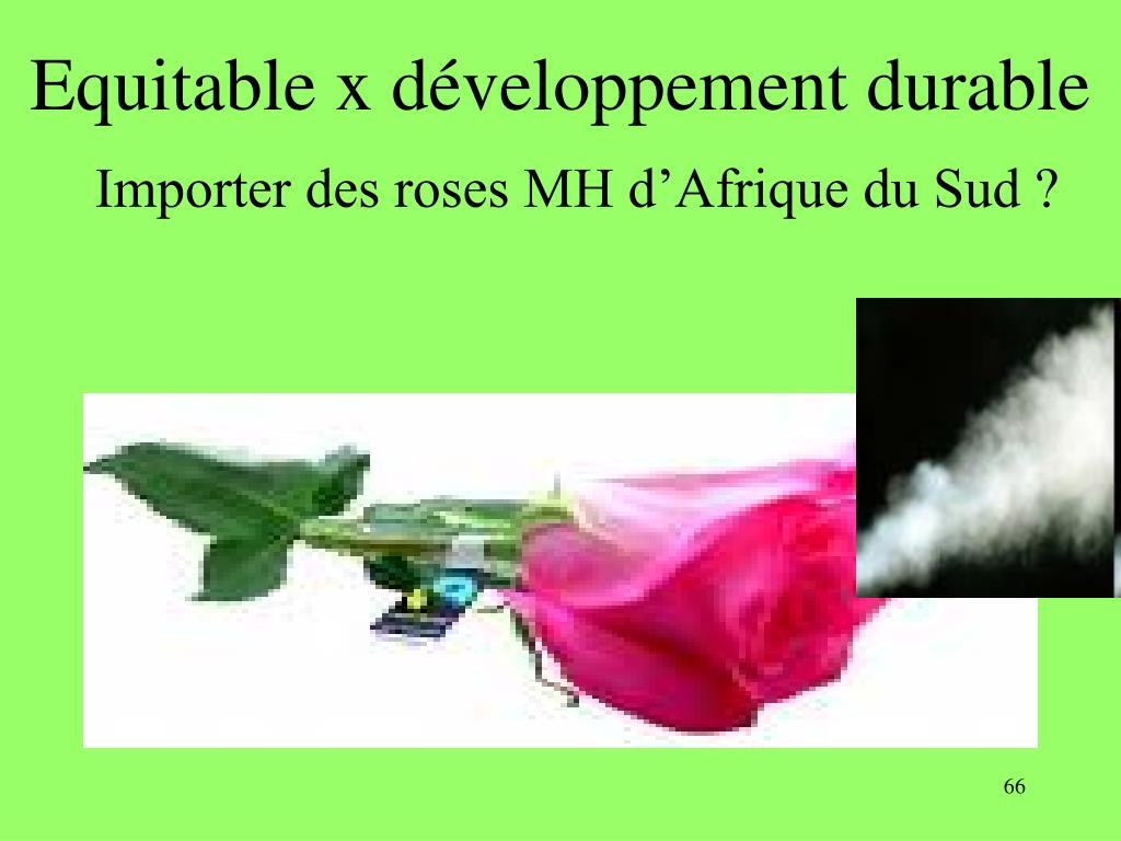 Equitable x développement durable