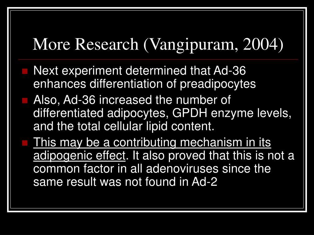 More Research (Vangipuram, 2004)