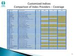customized indices comparison of index providers coverage